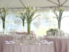 wedding-centerpieces-picture